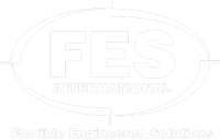 FES International